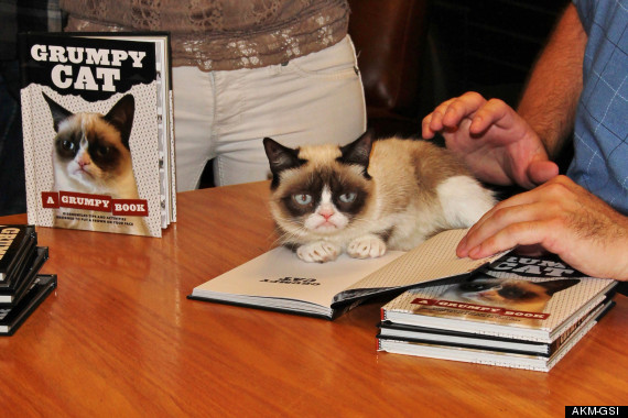Grumpy Cat does not look impressed at her book signing