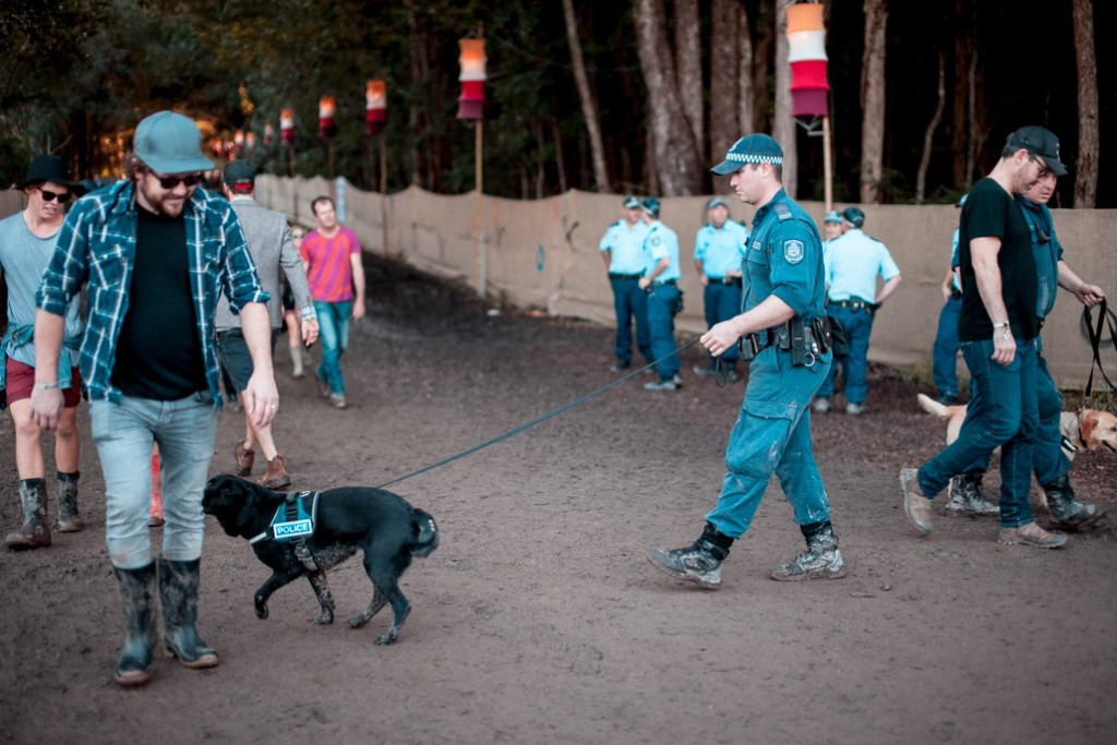 Sniffer dogs procedure strip search