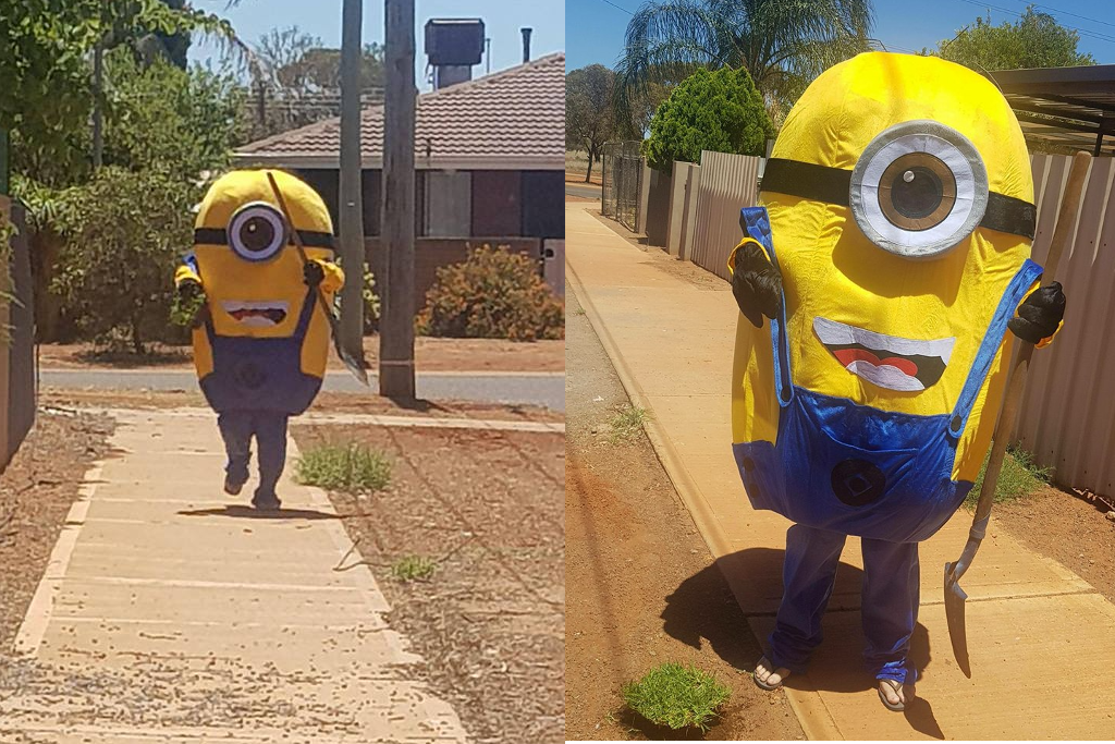 Minion Kissing Camera : A minion stole a chunk of this bloke s lawn and it s all caught on