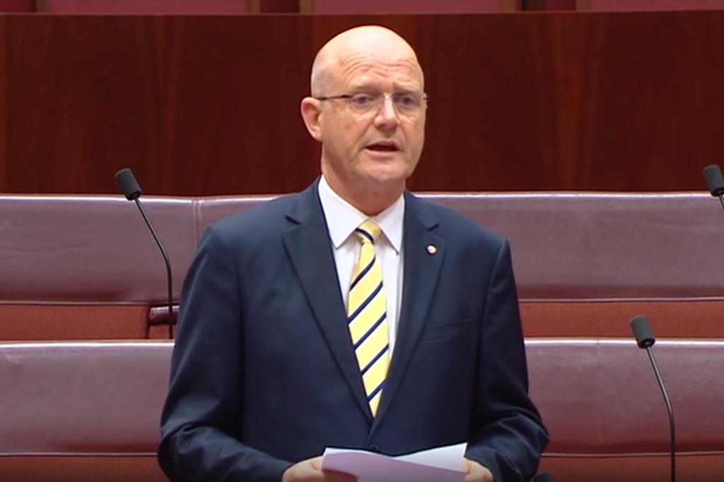 "David Leyonhjelm criticised by Mehreen Faruqi for ""condescending"" speech"