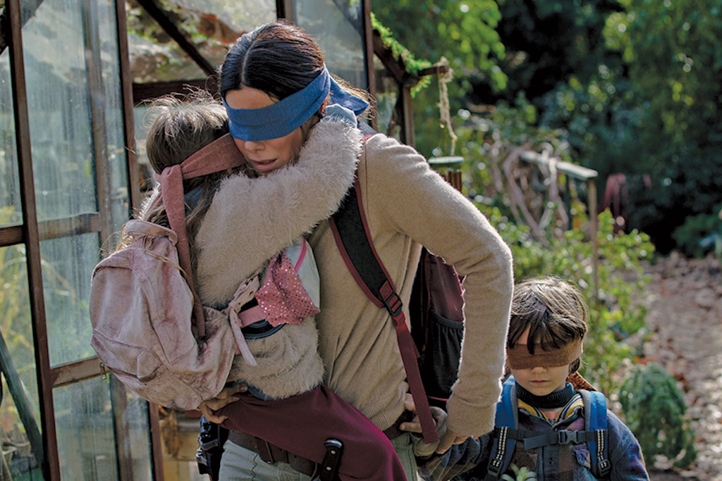 Bird Box There Are So Many Memes People Are Calling It A Conspiracy