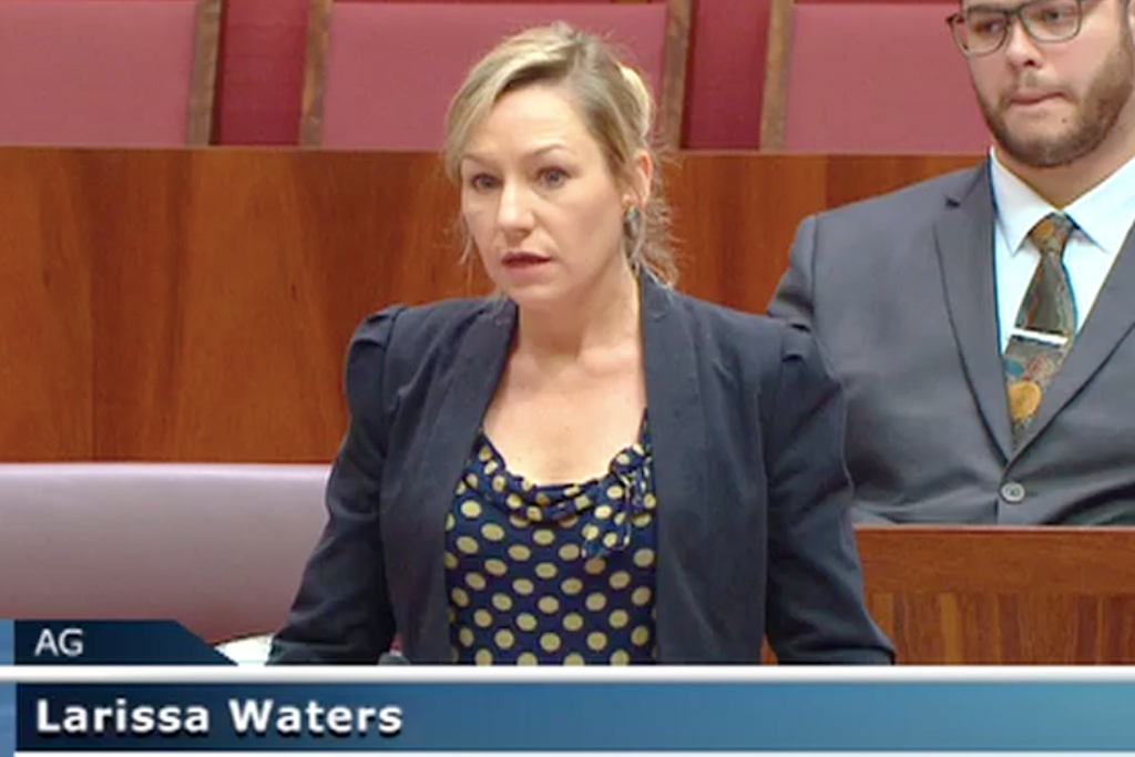 Drop Everything And Watch Larissa Waters' Powerful Call To Raise Newstart